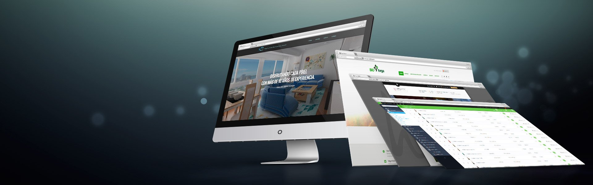 Creative Website Designing and Developing Company